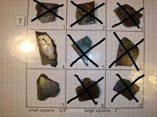 T Group Blue Ammolite Ammonite Your Choice (Pick One) Ready to Make Jewelry