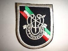 Vietnam War US Special Forces DE OPPRESSO LIBER Beret Patch