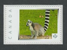 RING TAILED LEMUR  Canada Picture Postage stamp  p74wa7/1