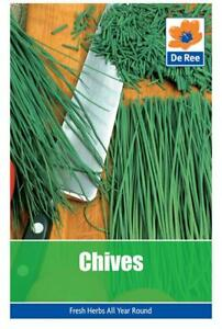 PACKET of CHIVES 150 Garden HERB SEEDS