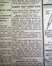 ALBERT FISH Serial Killer Child Rapist Cannibal INSANITY PLEA 1935 Old Newspaper