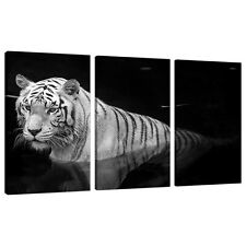 Split Canvas 3 Piece Multi Panel Triple Part Set UK White Tigers 3020