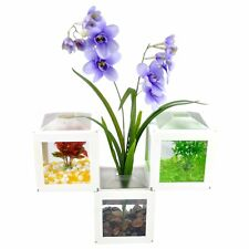 Office Mini Cube Arcylic Fighting Fish Tank Water Aquarium Home Desk Decorations