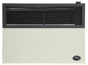 Ashley Hearth Products 17,000 BTU Direct Vent Propane Heater