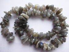 "EXTRA LARGE sgargianti LABRADORITE Gemstone Freeform Pepita beads16 ""Strand 11 ~ da 14 mm"