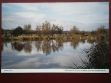 POSTCARD SUSSEX FISHING LAKES