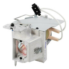 DLP Projector Lamp Bulb Module For Optoma BL-FP195B GT1080Darbee