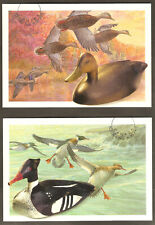 Canada Post Duck Decoys 2 International Stationary Postcards Appelants à canards