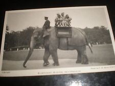 Old postcard elephant ride at Whipsnade zoo c1950s ref 36