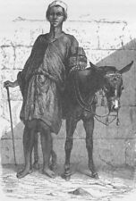 EGYPT. Fellah (Arab) donkey boy 1890 old antique vintage print picture