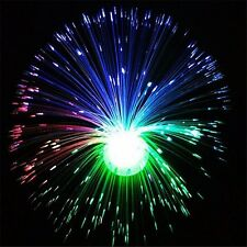Color Changing LED Fiber Optic Night Light Lamp Colorful Home Party Decor L