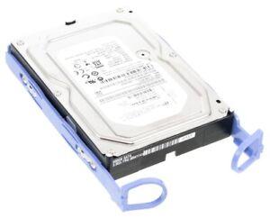 """HDD IBM 00W1445 500GB 7.2k SATA 3.5"""" 00W1141 WS5003ABYX"""