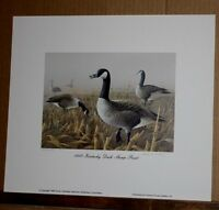 Canada Geese 1988 Kentucky Duck Stamp Print with Stamp by Lynn R Kaatz Waterfowl
