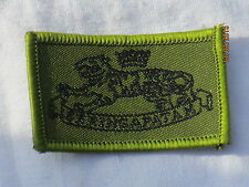 38th seringapatam Battery, royal Artillery, insigne, trf