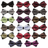 DQT Formal Casual Men's Diamond Tip Bow Ties