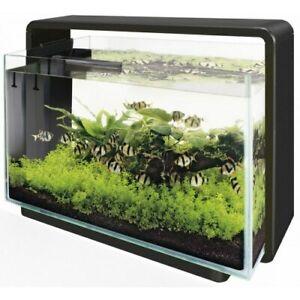 Superfish Home Aquarium | Fish