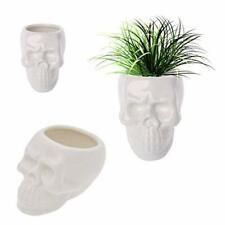 Succulent Planter Pot Set Of 2 Modern Skull White Ceramic Succulent Planter Pots