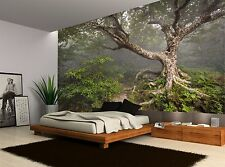 Forest Tree Branches Nature Green Wall Mural Photo Wallpaper GIANT WALL DECOR