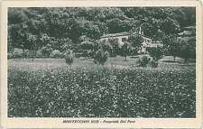 CARTOLINA d'Epoca - COMO : MONTEVECCHIO SUD 1933