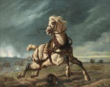 Louis Paternostre A Horse Running Away From The Battle Print 11 x 14    #5966