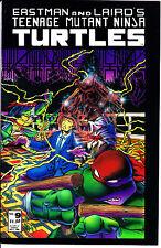 Mirage Studios Comics TEENAGE MUTANT NINJA TURTLES 1986 #9 VF