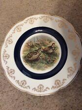 Snipe Bird Plater Platter England Wood & Sons - Alpine White Ironstone 1907?