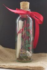 Message in a Bottle Personalised Love Letter Keepsake Your sentiments on scroll