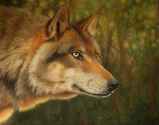 "Original Sue Warner pastel painting on velour board. Wolf, 16"" x 19.5"" unframed"