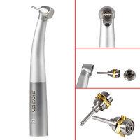 SKYSEA Dental Fiber Optic LED Air Turbine Handpiece fit KAVO Coupler MINI Head