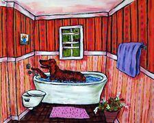 Irish Setter dog bath pet salon 8.5x11  artist prints animals gift new