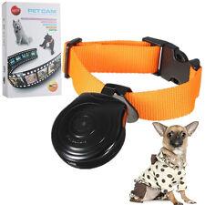 Hot Dogs Cats Puppy Digital Black Pets Collar Cam Camera Video Recorder Monitor