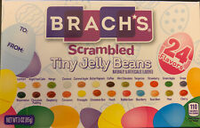 Brach's Scrambled Tiny Jelly Beans 24 Flavors 3oz Fast  Shipping