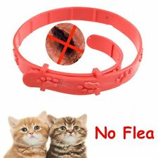 Adjustable Cat Kitten Remedy Pet Collar Neck Strap Anti Flea Mite Acari Tick