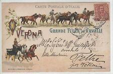 1903 grande fiera di cavalli - verona