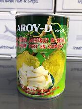 AROY-D Jack Fruit in Brine Jackfruit 565g - Drained Weight 280g (10oz)