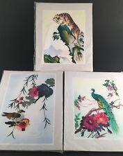 3 Hand Cut Dyed Wheat Stalk on Silk wall art peacock tiger birds Vintage