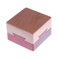 Classic Funny IQ Mind Wooden Magic Box Puzzle Game BrainS Teaser EducationalDSQA