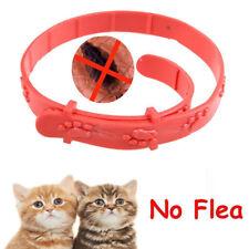 Red Cat Kitten Adjustable Pet Collar Neck Strap Remedy Anti Flea Mite Tick New