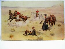 1907 SIGNED MCFALL POSTCARD THE TENDERFOOT, COWBOYS,COWGIRL,MAN FALLS OFF HORSE