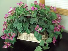 NWT Artificial Pink Flowers In White Wicker Container Better Homes And Gardens