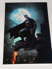 dc comics BATMAN glossy  finish poster