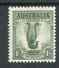 Australia 1937-49 1s grey-green p13.5x14 SG174 MNH