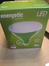 Energetic Led Indoor/Outdoor spot/flood light 8 Watts lights Green zz
