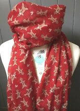 PEONY GINGERBREAD MAN RED SCARF QUIRKY GIFT CHRISTMAS CAKE PERSON PRESENT BAKER