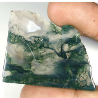 PURE NATURAL WONDERFUL MOSS AGATE SLAB ROUGH 100.25Cts. FANCY CAB RARE GEMSTONES