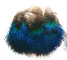 Free shipping 10 PCS beautiful 2-3 cm / 1 inches DIY Peacock blue chip feathers