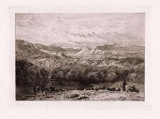 "Detailed 1800s DAVID COX Antique Etching ""Pontcysyllte Aqueduct and Canal"" COA"