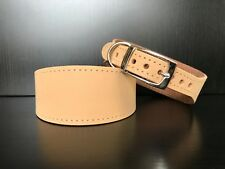 S/M Leather Dog Collar LINED Greyhound Lurcher Whippet Saluki BEIGE NUBUCK