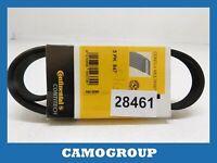 Belt Service V-Ribbed Belt Ford Focus Peugeot 605 Renault Clio Safrane 5PK847