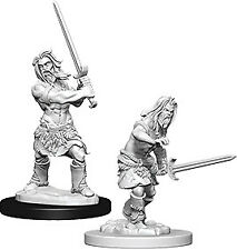 Barbarian Miniature In Dungeons & Dragons Miniatures for sale | eBay
